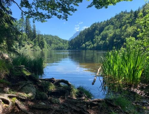 4-Seen-Wanderung vom Hechtsee aus