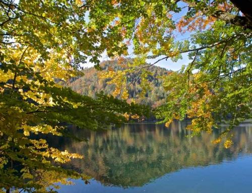 Herbst Öffnungszeiten Hechtsee Seerestaurant